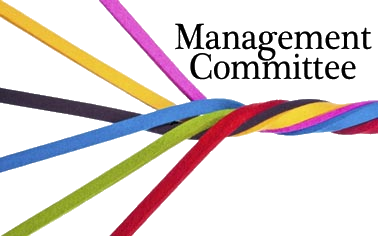 Management Committee Icon