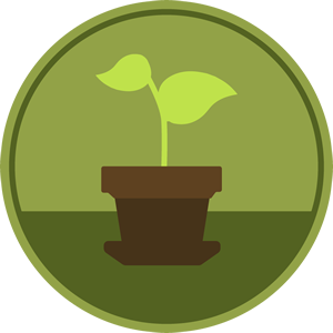 Learn - Plant